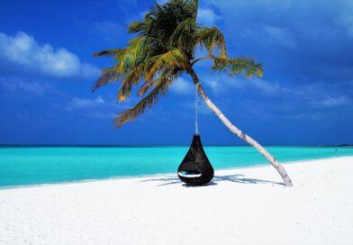 maldives, palm tree, hammock